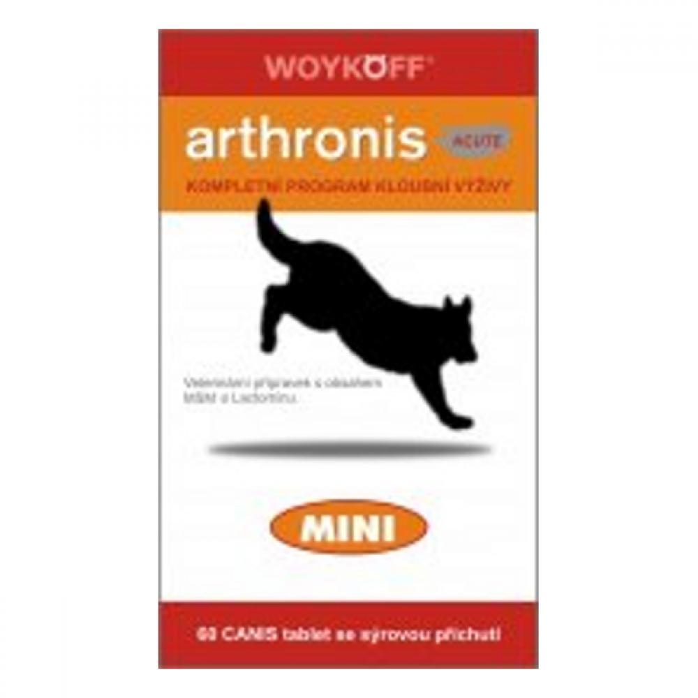 Arthronis mini ACUTE CANIS syrová príchuť 60tbl