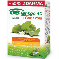 GS Ginkgo 40 + Gotu kola 80+40 tabliet