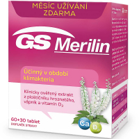 GS Merilin 60 + 30 tablet