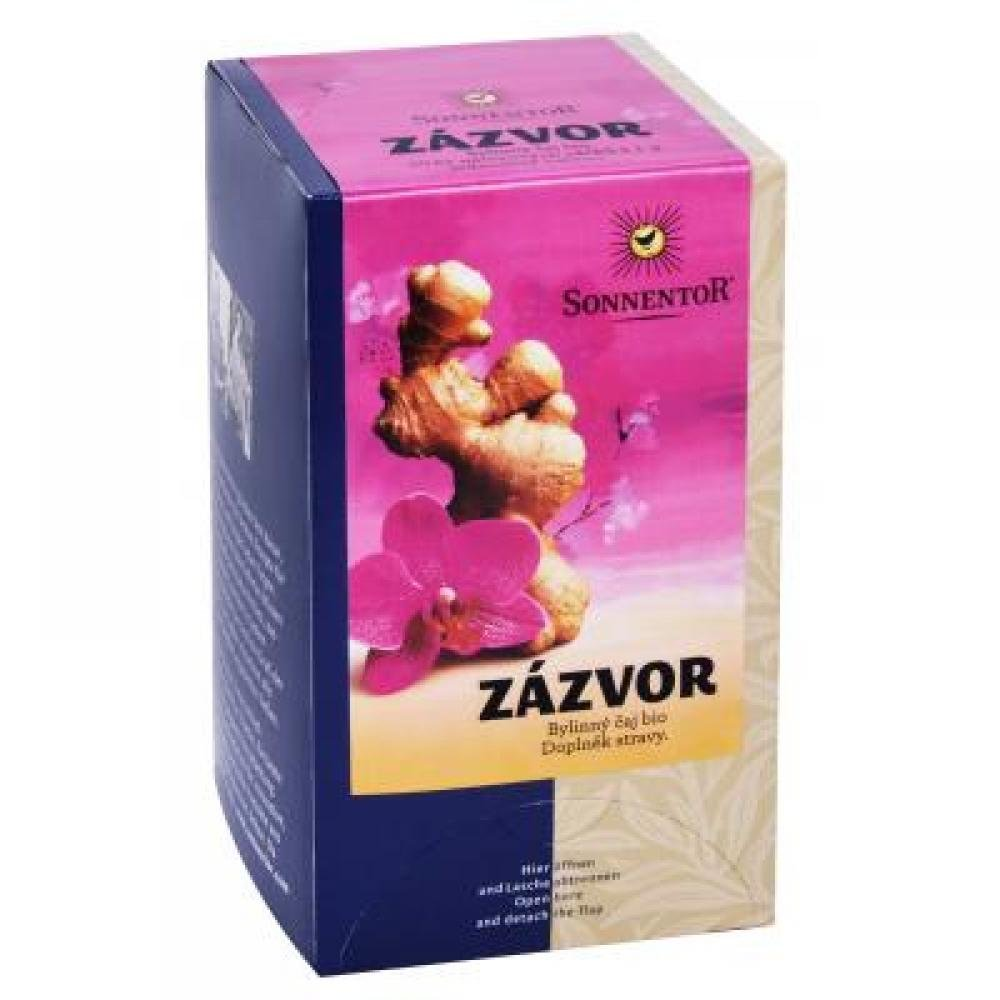 Zázvor - bio čaj porc. darčekový 20g (20sáčků)